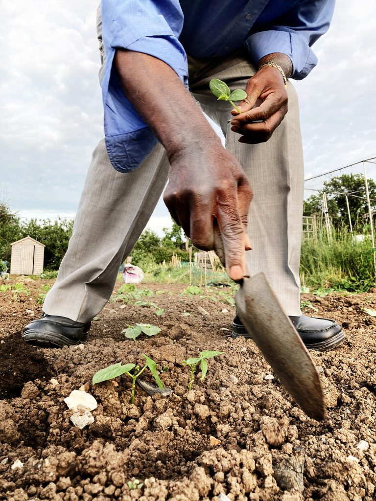 Holly Large - A person's hands holding a small gardening spade about to dig into soil
