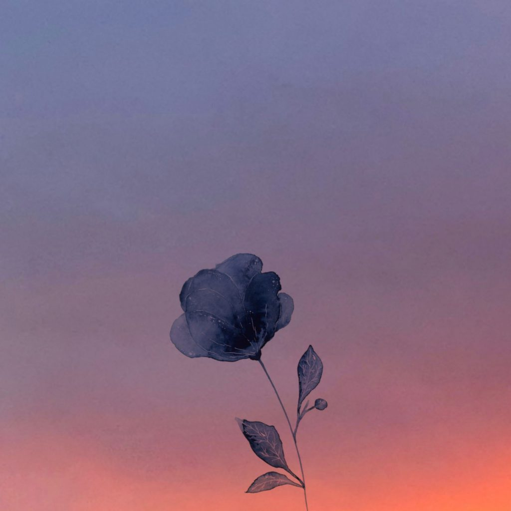 Maria Kintsurashvili - Blue drawing of a flower silhouetted against a photo of the sky at sunset